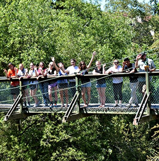 People on a bridge through trees